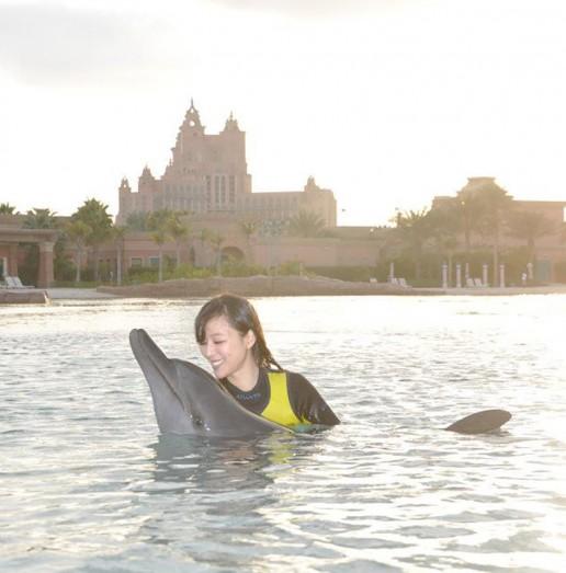 Jingchu Zhang Dolphin Bay Atlantis
