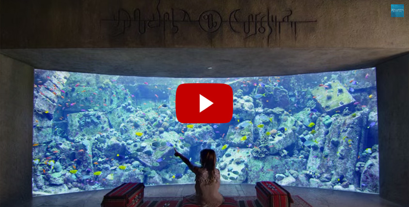 The Lost Chambers aquarium - Atlantis the Palm