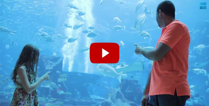 Dreams of Atlantis Come True for Aquaventure Scream Winners