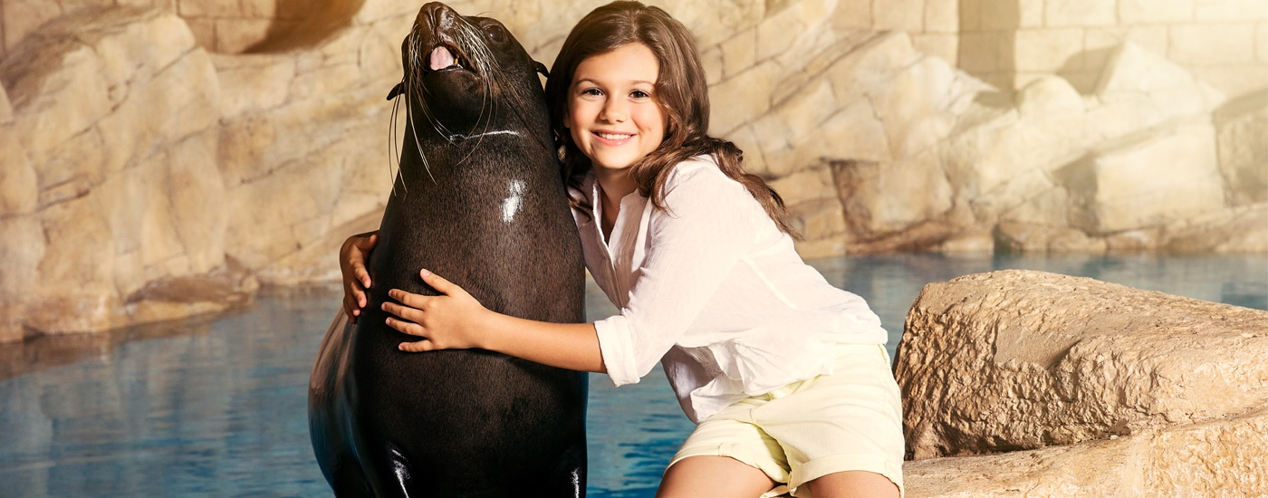 An Unforgettable Sea Lion Discovery Experience at Atlantis, The Palm!