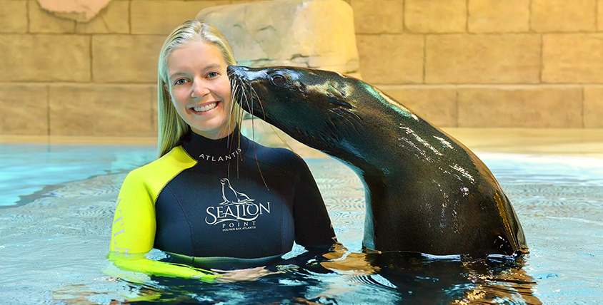 Sea Lion Discovery - Atlantis The Palm Dubai