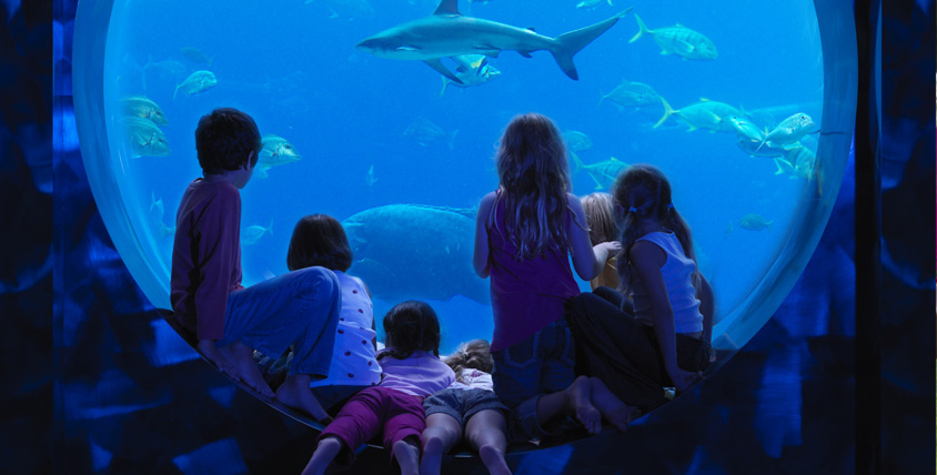 Kids Club, Atlantis the Palm