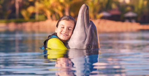 dolphin-bay-experience-atlantis-dubai