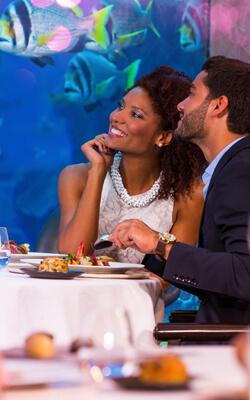 Make Valentine's Day Extra Special with Atlantis, The Palm Dubai