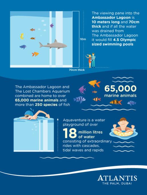 ambassador-lagoon-and-the-lost-chambers-aquarium