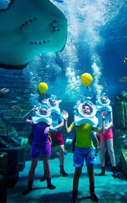 Experience the Sights of Marine Life at Atlantis Dubai with These Unique Underwater Helmet Diving Experiences