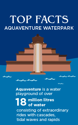 Top 10 Fun Facts About Aquaventure Waterpark