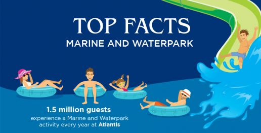 top-facts-atlantis-marine-waterpark-dubai-attractions