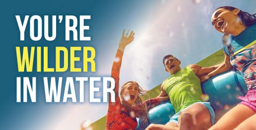 you-are-wilder-in-water-atlantid-dubai