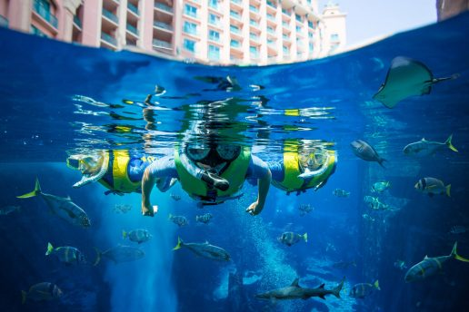 ultimate-snorkel-atlantis-dubai