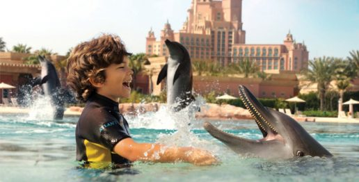 dolphin-bay-things-to-do-in-atlantis-dubai