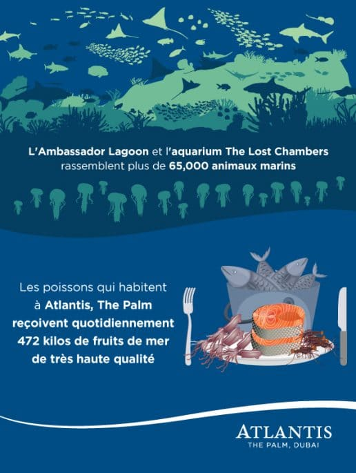 l-ambassador-lagoon-et-the-lost-chambers-aquarium
