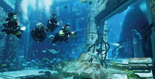 romantic-underwater-diving-expereinces-atlantis-dubai
