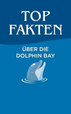 Top Fakten über die Dolphin Bay im Atlantis, The Palm