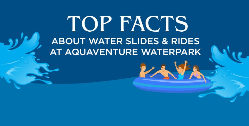 Top Facts About Water Slides & Rides at Atlantis Aquaventure Waterpark in Dubai