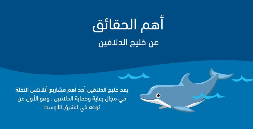 أهم الحقائق عن خليج الدلافين في أتلانتس النخلة