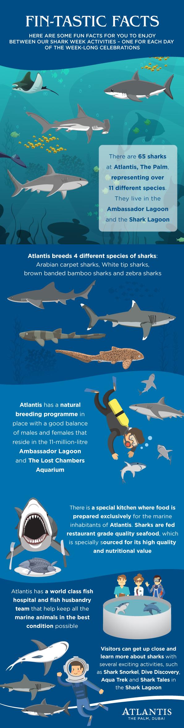 6 Jaw-some Atlantis Shark Week Facts | Atlantis, The Palm