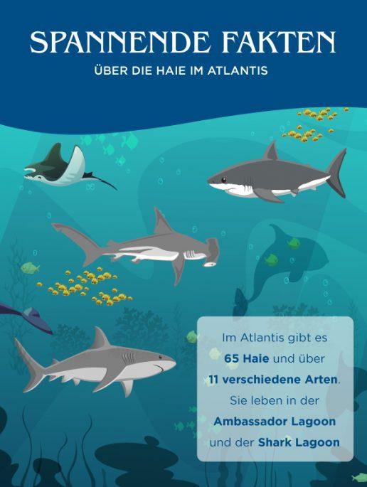 beeindruckende-fakten-über-die-shark-week
