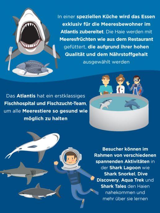 shark-week-fakten-uber-atlantis-dubai