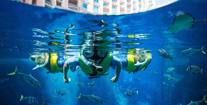 diving-courses-ultimate-snorkel-atlantis