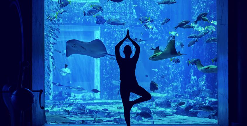 hatha-yoga-underwater-ambassador-lagoon-dubai-fitness-challenge
