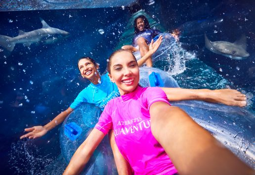 atlantis-shark-attack-aquaventure-waterpark