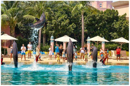 dolphin-bay-discount-dubai